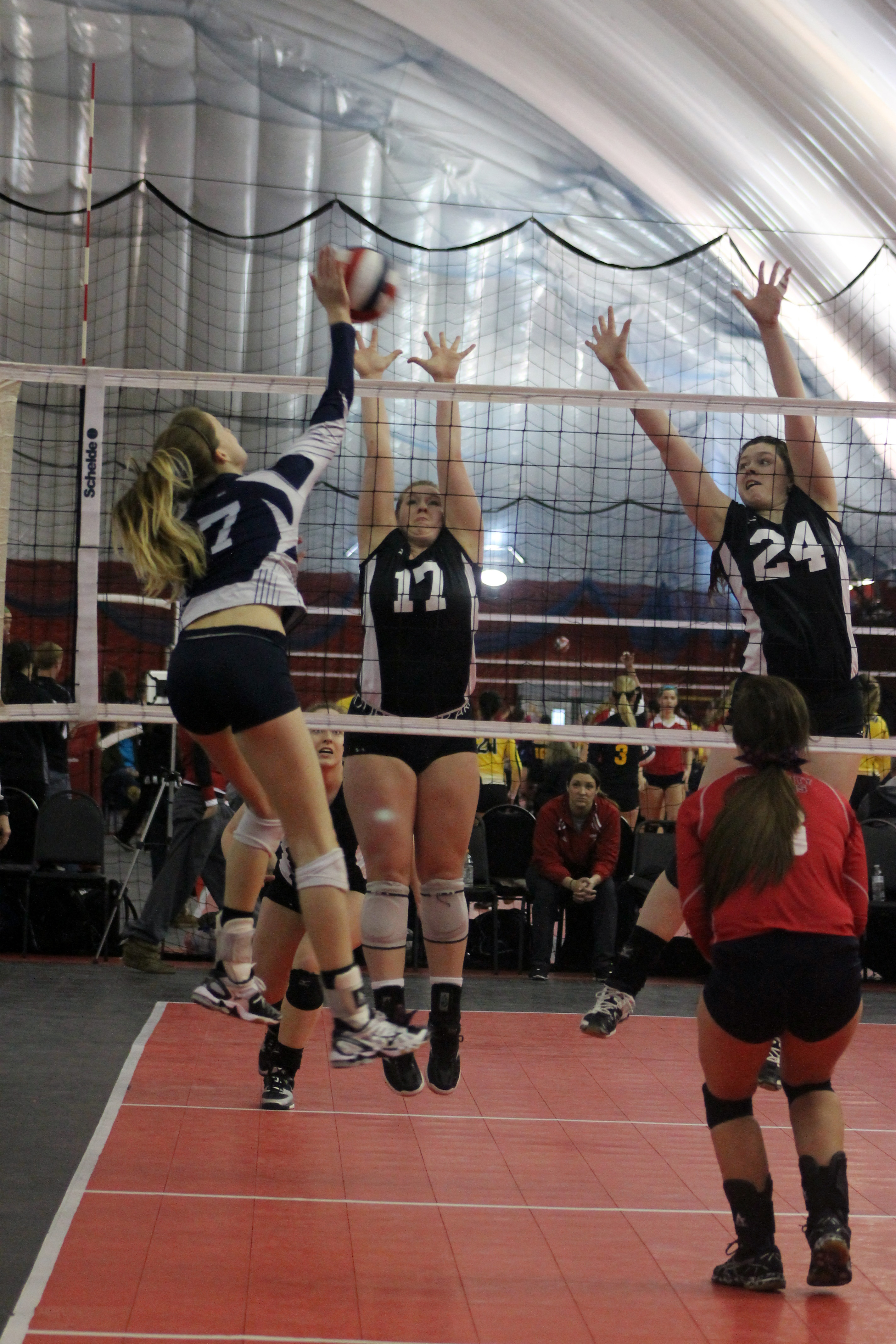 AVCA Player of the Week